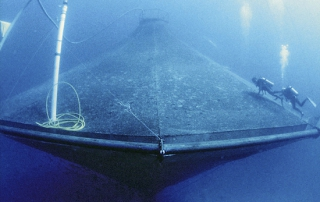 Aquaculture Cage: Photo by NOAA Photo Library.